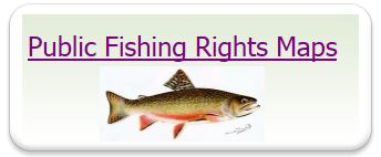 fishing pic logo